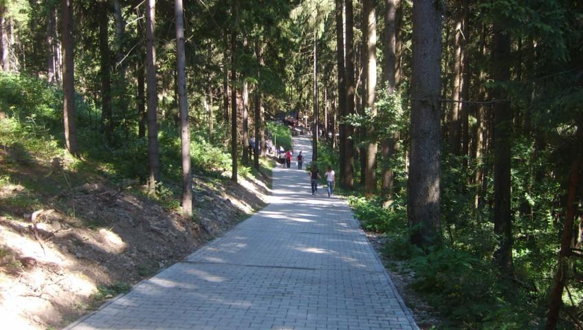 full_a73c40_f_normalFile1-kadan-zivcakova-356